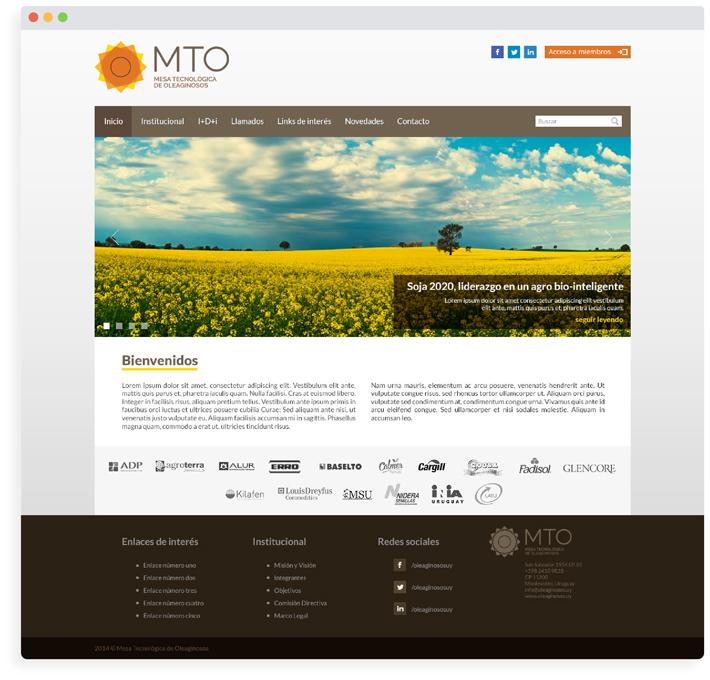 Mesa Tecnológica de Oleaginosos / Web